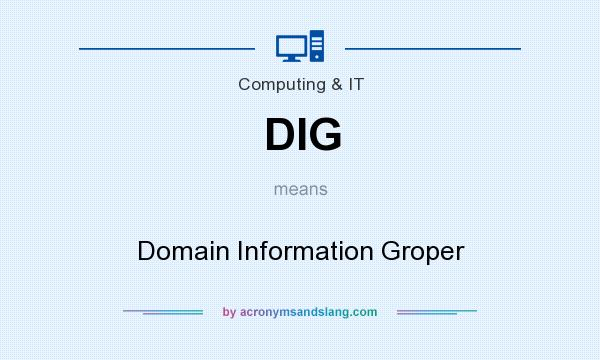 What does DIG mean? It stands for Domain Information Groper