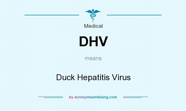 What does DHV mean? It stands for Duck Hepatitis Virus