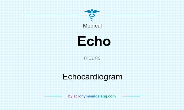 What does Echo mean? It stands for Echocardiogram
