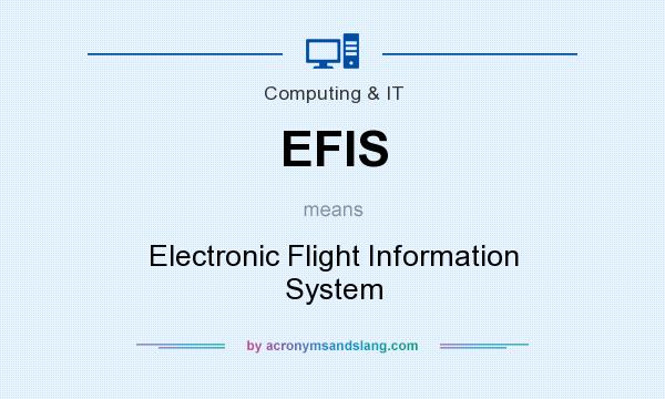 What does EFIS mean? It stands for Electronic Flight Information System