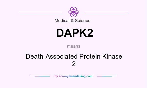 What does DAPK2 mean? It stands for Death-Associated Protein Kinase 2