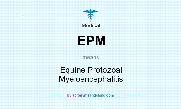 What does EPM mean? It stands for Equine Protozoal Myeloencephalitis