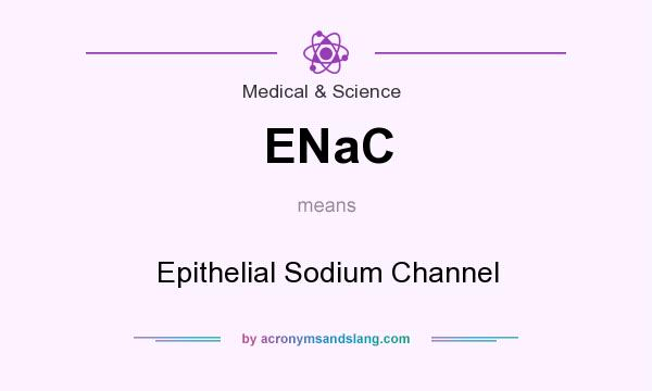 What does ENaC mean? It stands for Epithelial Sodium Channel