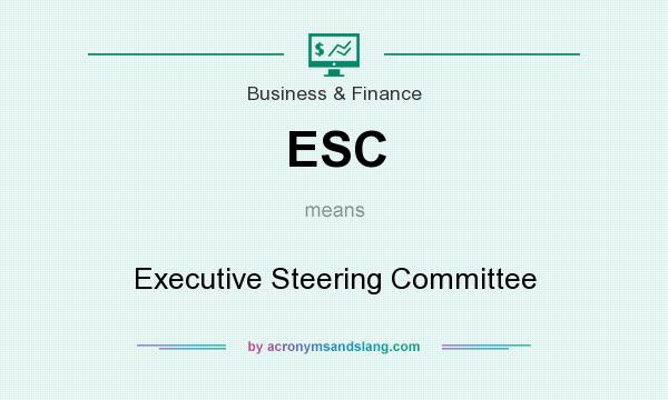 What does ESC mean? It stands for Executive Steering Committee