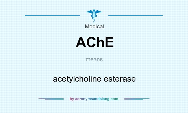 What does AChE mean? It stands for acetylcholine esterase