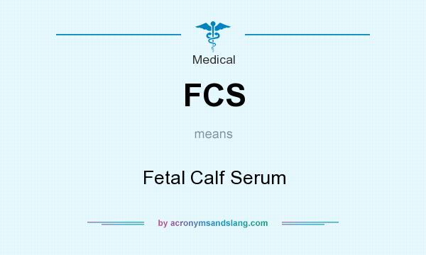 What does FCS mean? It stands for Fetal Calf Serum
