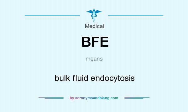 What does BFE mean? It stands for bulk fluid endocytosis