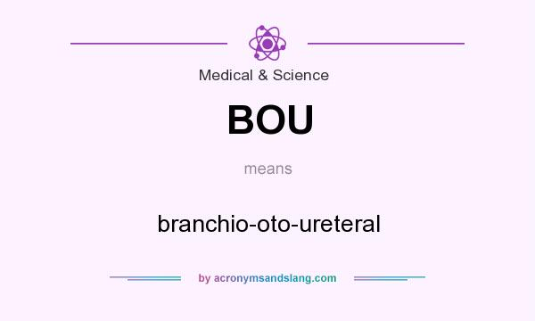 What does BOU mean? It stands for branchio-oto-ureteral