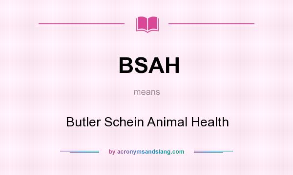 What does BSAH mean? It stands for Butler Schein Animal Health