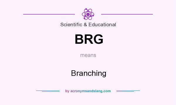 What does BRG mean? It stands for Branching