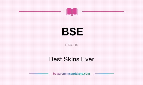 What does BSE mean? It stands for Best Skins Ever