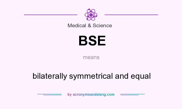 What does BSE mean? It stands for bilaterally symmetrical and equal