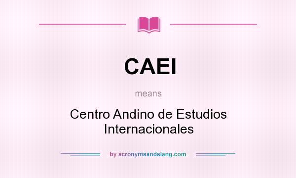 What does CAEI mean? It stands for Centro Andino de Estudios Internacionales