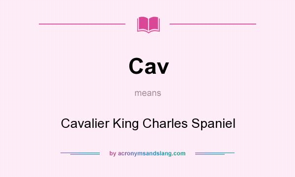 What does Cav mean? It stands for Cavalier King Charles Spaniel