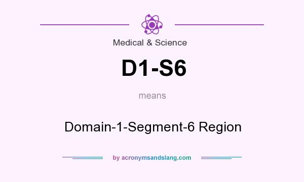 What does D1-S6 mean? It stands for Domain-1-Segment-6 Region