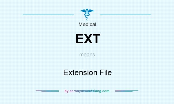 What does EXT mean? It stands for Extension File