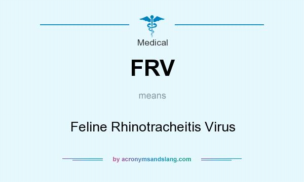 What does FRV mean? It stands for Feline Rhinotracheitis Virus