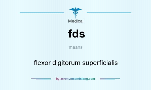 What does fds mean? It stands for flexor digitorum superficialis