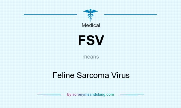 What does FSV mean? It stands for Feline Sarcoma Virus