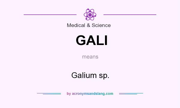 What does GALI mean? It stands for Galium sp.