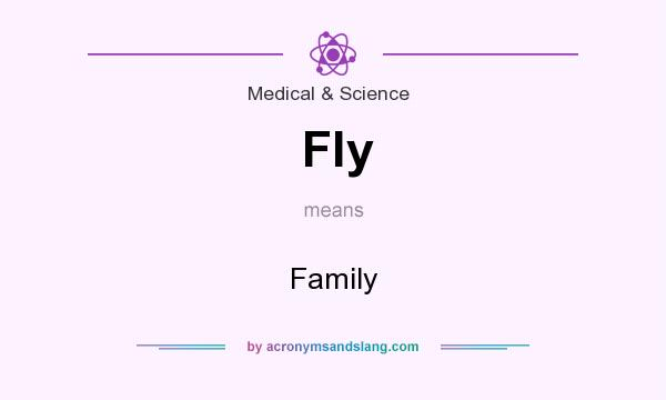 What does Fly mean? It stands for Family