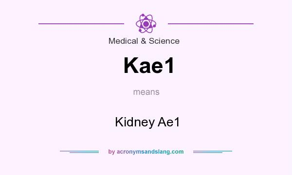 What does Kae1 mean? It stands for Kidney Ae1