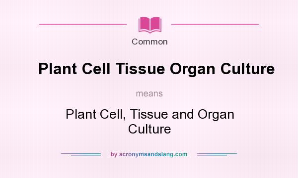 plant cell organ and tissue culture Plant physiology (biology 327) - dr plant organ culture describe the uses for cell and tissue culture in plant physiological research.