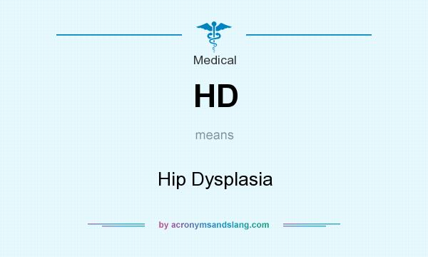 What does HD mean? It stands for Hip Dysplasia