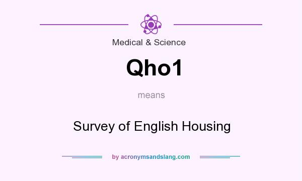 What does Qho1 mean? It stands for Survey of English Housing