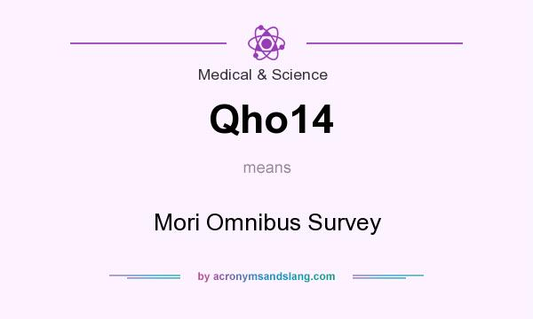 What does Qho14 mean? It stands for Mori Omnibus Survey
