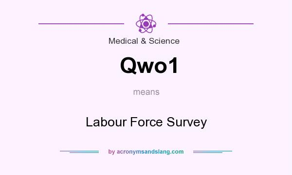 What does Qwo1 mean? It stands for Labour Force Survey