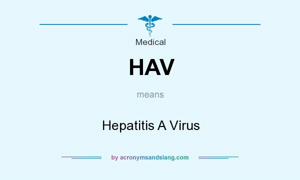 What does HAV mean? It stands for Hepatitis A Virus