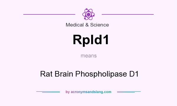 What does Rpld1 mean? It stands for Rat Brain Phospholipase D1