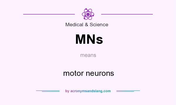 What does MNs mean? It stands for motor neurons
