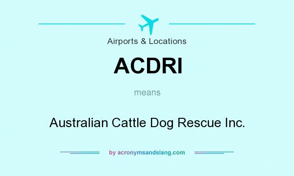 What does ACDRI mean? It stands for Australian Cattle Dog Rescue Inc.