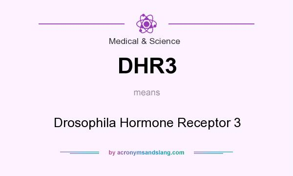 What does DHR3 mean? It stands for Drosophila Hormone Receptor 3