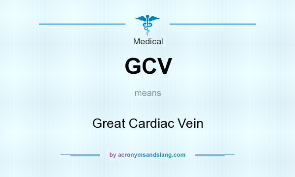 What does GCV mean? It stands for Great Cardiac Vein