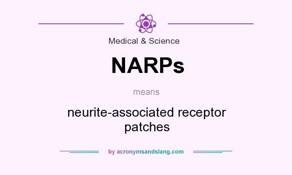 What does NARPs mean? It stands for neurite-associated receptor patches
