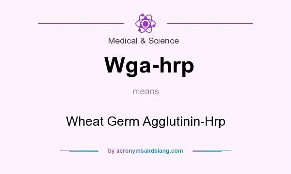 What does Wga-hrp mean? It stands for Wheat Germ Agglutinin-Hrp