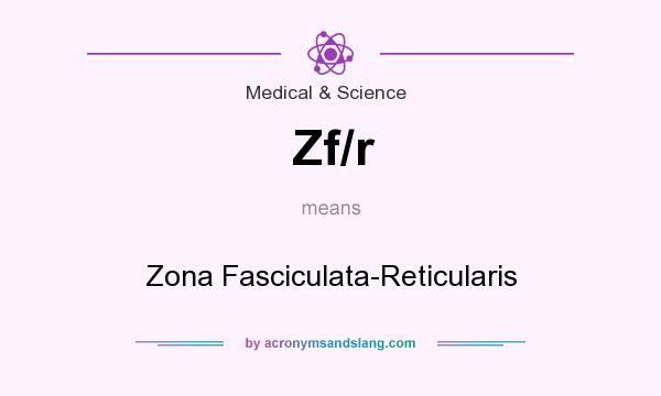What does Zf/r mean? It stands for Zona Fasciculata-Reticularis