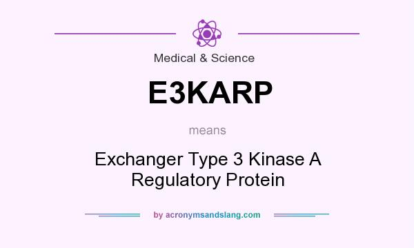 What does E3KARP mean? It stands for Exchanger Type 3 Kinase A Regulatory Protein