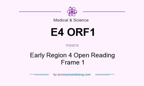 What does E4 ORF1 mean? It stands for Early Region 4 Open Reading Frame 1