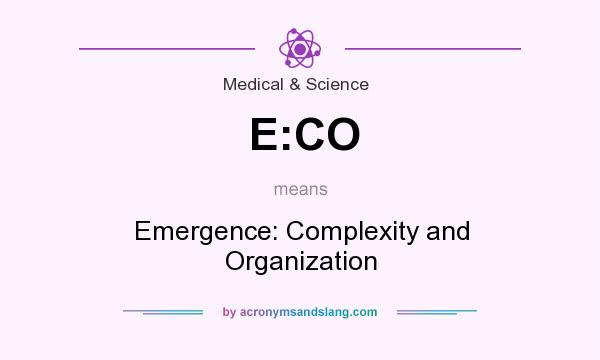 What does E:CO mean? It stands for Emergence: Complexity and Organization