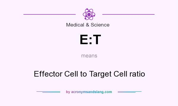 What does E:T mean? It stands for Effector Cell to Target Cell ratio