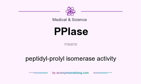 What does PPIase mean? It stands for peptidyl-prolyl isomerase activity