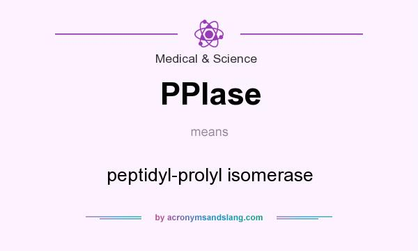What does PPIase mean? It stands for peptidyl-prolyl isomerase