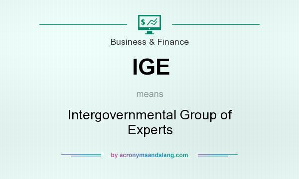 What does IGE mean? It stands for Intergovernmental Group of Experts
