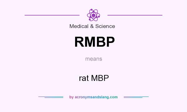 What does RMBP mean? It stands for rat MBP