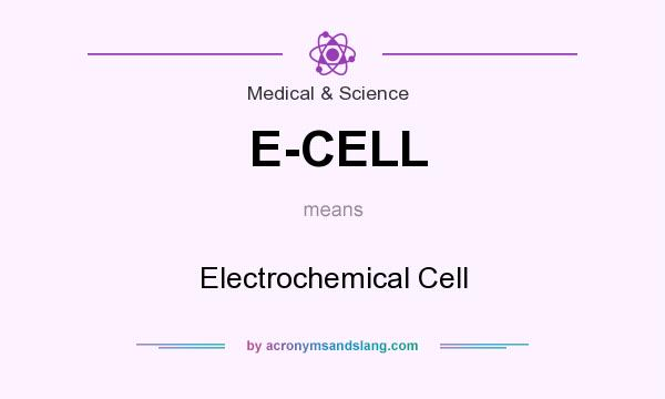 What does E-CELL mean? It stands for Electrochemical Cell