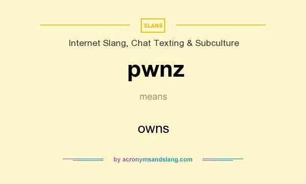 What does pwnz mean? It stands for owns